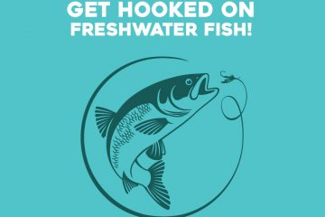 Get hooked on freshwater fish