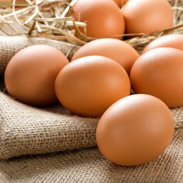 Fresh eggs online
